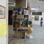 Presiana Shisheva – Bulgaria – Visual Arts and Installations - https://presianashisheva.wordpress.com/